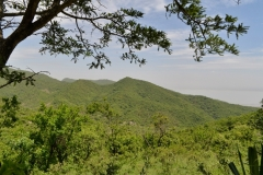 Mbulu highlands 1